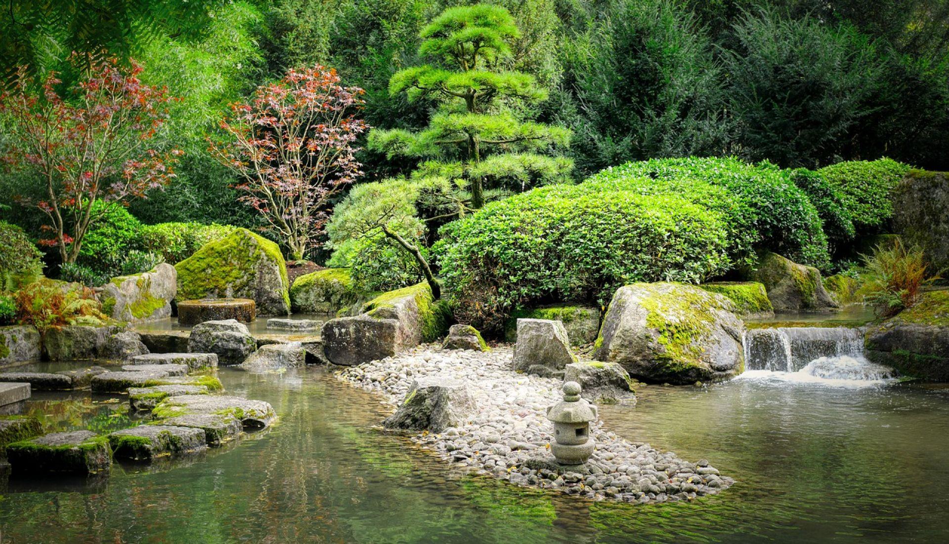 Jardins extraordinaires : Jardin des sables et Jardin Zen